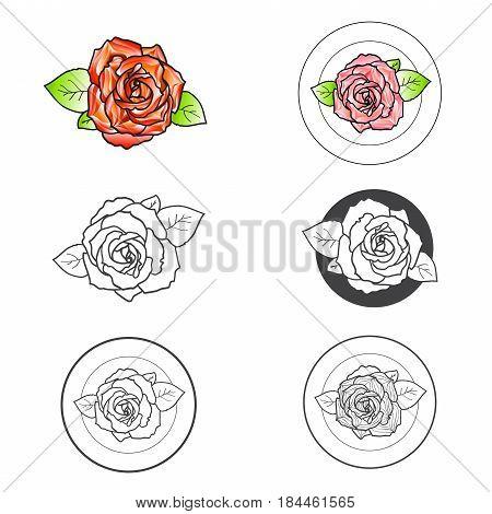 Illustration of Rose Flower Different Logo Design Collection