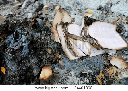 Burnt Papers, Burning Book