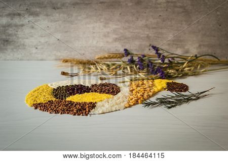 Rice, buckwheat grain, corn, pea, semolina, lentil and and others grains on a white background.
