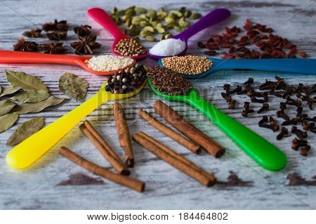 Black pepper, cardamom, coriander, mustard seeds, bay leaf, cinnamon, anise, goji berries, salt, sesame and cloves in the colorful spoons in the form of a circle.