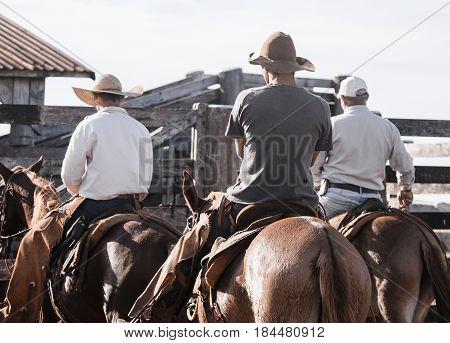 Three Cowboys Riding Horses On A Farm Corral