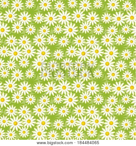 camomile simple classic vector pattern. seamless flower decoration.