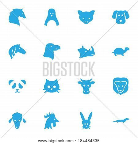 Set Of 16 Alive Icons Set.Collection Of Diver, Gecko, Tortoise And Other Elements.
