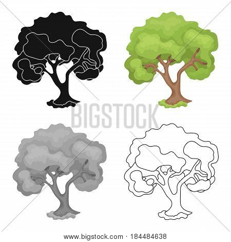 An old tree with a large green crown.Farm and gardening single icon in cartoon style vector symbol stock web illustration.