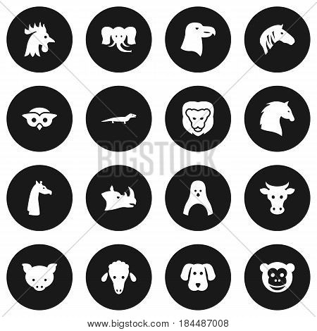 Set Of 16 Brute Icons Set.Collection Of Hog, Ape, Horse And Other Elements.