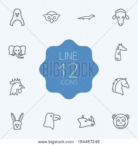 Set Of 12 Brute Outline Icons Set.Collection Of Owl, Eagle, Rabbit And Other Elements.