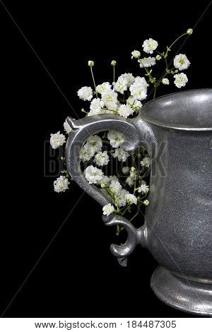 antique pewter pitcher with baby's breath isolated on black