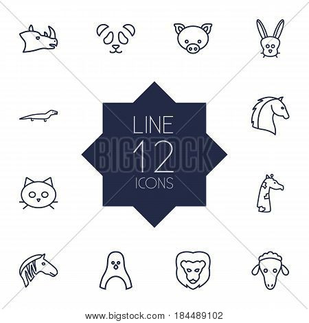 Set Of 12 Beast Outline Icons Set.Collection Of Horse, Cat, Pig And Other Elements.