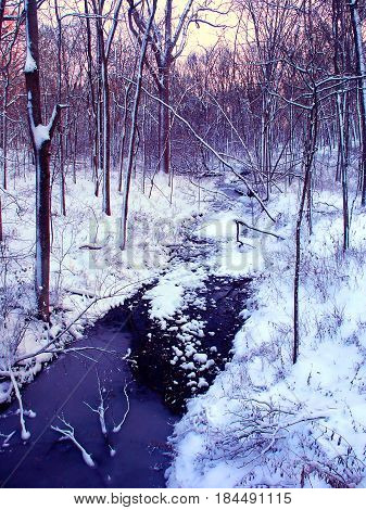 Snow covered stream and forest scenery of Allerton Park in central Illinois