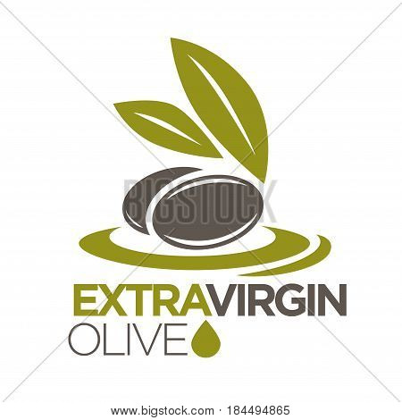 Extra virgin olive oil logo design vector illustration of company label with black olives berries with leaves. Healthy condiment template with sticker of berry ingredient flat logotype on white.