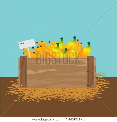 banana in a wooden crate Vector illustration.