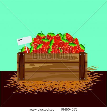 strawberry in a wooden crate Vector illustration
