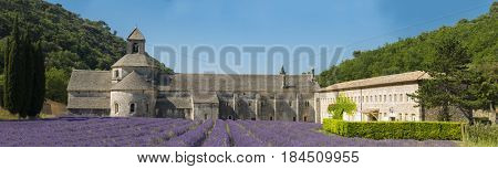 Cistercian Abbey of Senanque and blooming rows of lavender. Gordes, Vaucluse, Provence - France. Panorama