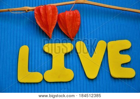 word live on a  abstract colrful background