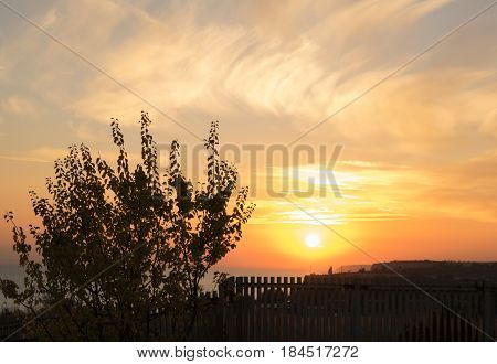 beautiful purple sunset over the sea behind a tree and fence in autumn