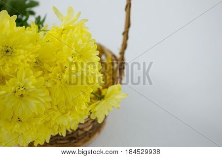 Close-up of yellow flowers in wicker basket on white background
