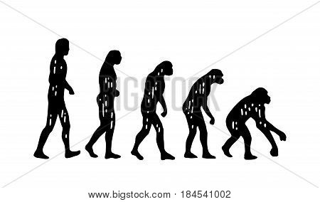 Theory of evolution of man, on the contrary. From man to monkey. Vintage black engraving illustration for poster. Isolated on white background.