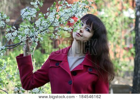 Beautiful girl sniffs a flowering cherry branch