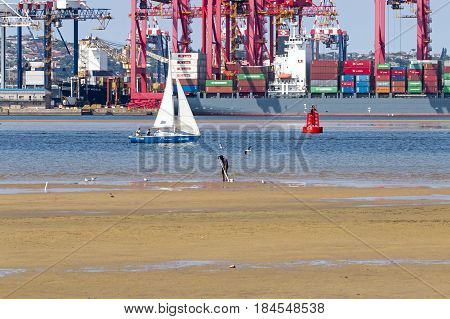 DURBAN SOUTH AFRICA - APRIL 9 2017: Many unknown people at early morning low tide against loading crane and container vessel in Harbor in Durban South Africa
