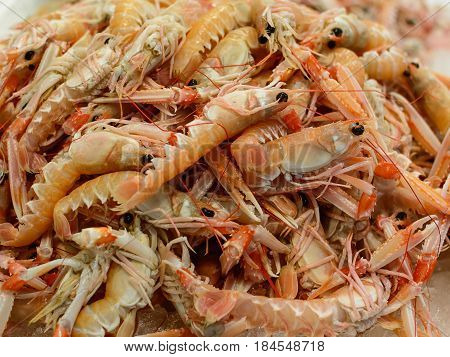 Some langoustine in stack in seafood market