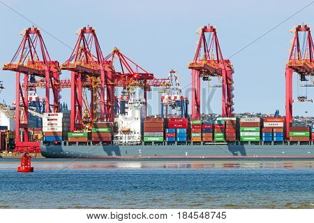 DURBAN SOUTH AFRICA - APRIL 9 2017: Early morning close-up of container ship and red loading cranes in harbor in Durban South Africa