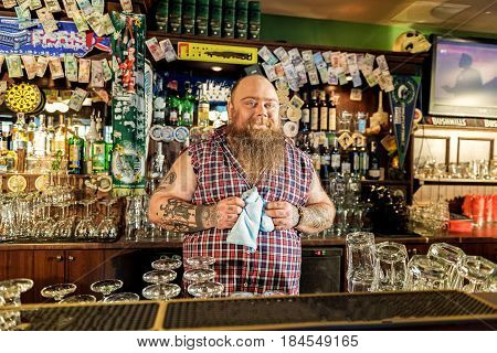 Obese male expressing happiness while working at counter in beerhouse. Different glasses and alcohol drinks locating near him