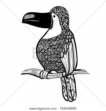 Vector illustration. Graphic arts. Toucan. Tropical toucan bird. Black and white.