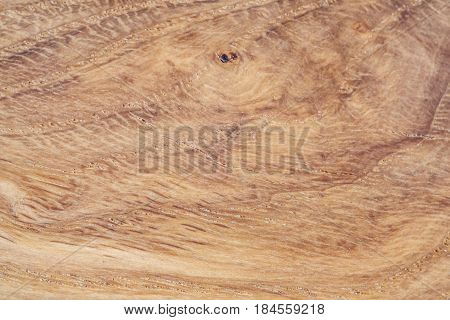 Background conceptual oak wood abstract nature landscape image macro close-up