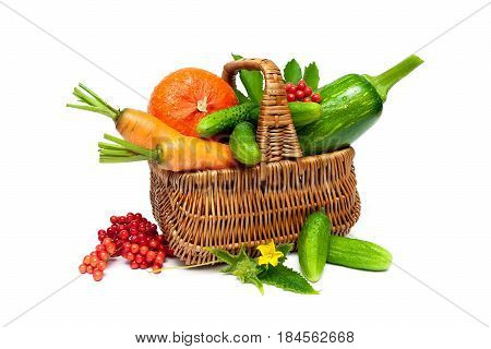 Vegetables and berries viburnum in a basket isolated on white background. Horizontal photo.