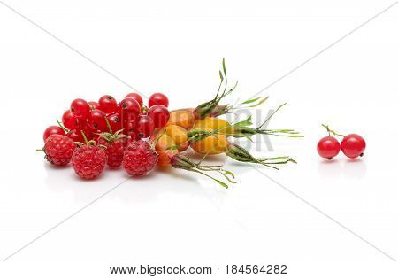 Berries of raspberry red currant and dogrose on a white background. Horizontal photo.