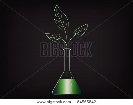 Leaves Growing From Inside A Laboratory Phial, Organic Products