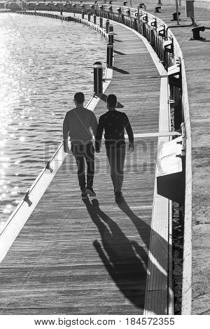 Gay Couple Holding Hands by the Sea