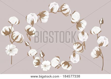 Vector Wreath Of Twigs And Cotton Flowers. Botanical Illustrations. Greeting Card