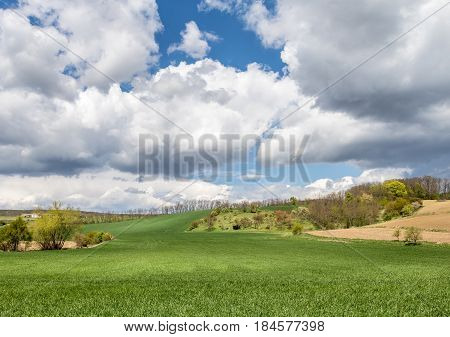 Spring Landscape With Green Fields And Blue Sky