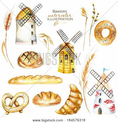 Set, illustration collection with watercolor bakery products (bagel, loaf, French baguette), wheat spikelets and windmills, hand drawn isolated on a white background