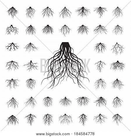 Big collection of shape of black roots. Vector illustration.