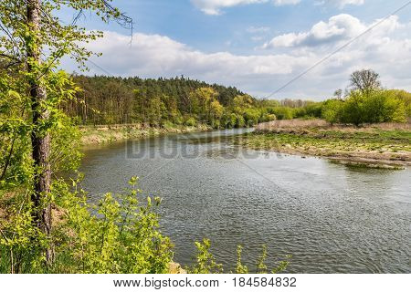 Spring Landscape With River, Forest And Blue Sky