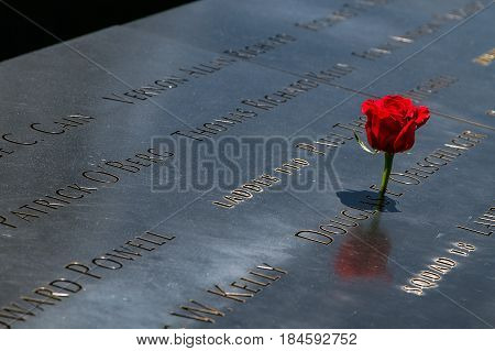 New York April 28 2017: A red rose is placed at 9/11 Memorial in New York City. The memorial commemorates the victims of the terrorist attack.