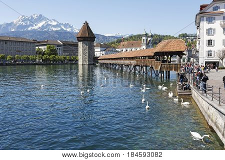 Lucerne Switzerland - May 05 2016: Octagonal tower and the Roofed Chapel Bridge by the River Reuss and Jesuit church and Peak of Pilatus are four widely known landmarks in the city