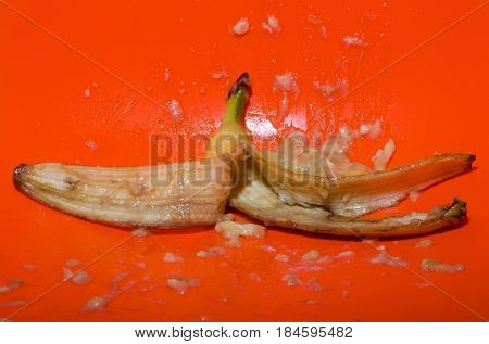 yellow color fruit ripe mellow banana squeezed mashed or crushed with skin and flesh drops splashes on bright orange background. Vitamin and healthy eating