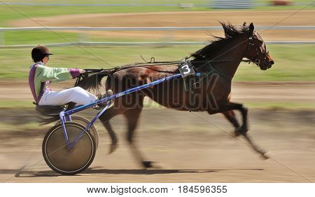 Orel Russia - April 30 2017: Harness racing. Sorrel racing horse pulling a sulky motion blur
