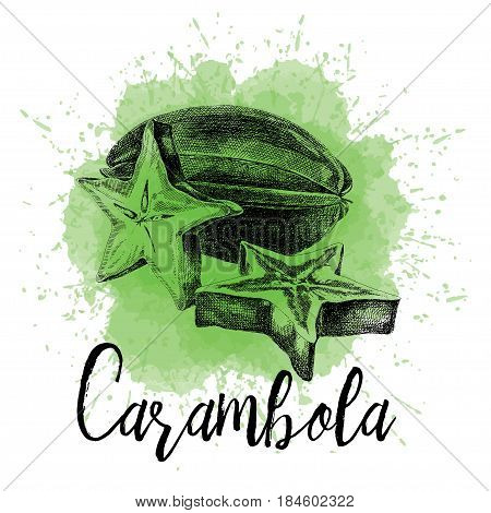 Vector illustration, carambola fruit in hand-drawn graphics. Asian exotic tropical fruit, depicted on a green watercolor background. Design for packing carambola, for juicy, desserts, smoothies