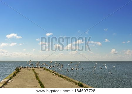 The pier on the sea. the stone pier for fishing. Nida