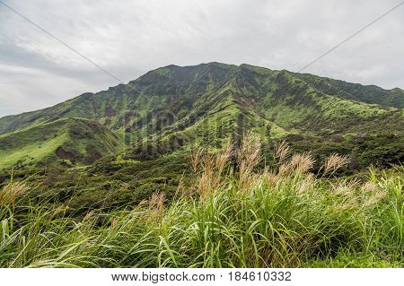 Mount Aso Landscape Which Is Active Volcano In Kumamoto, Japan