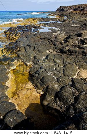 In Lanzarote Froth Coastline  Spain Pond  Rock  Musk  And Summer