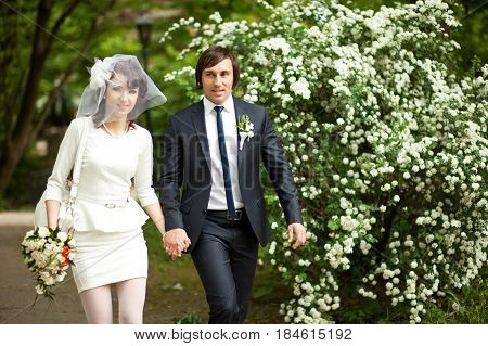 Stylish Newlyweds Walks Along The Road Sourrounded With White Blooming Bushes