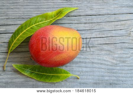 Fresh mango fruit and mango tree leaves on a wooden background.Healthy food,diet or vegan food concept.