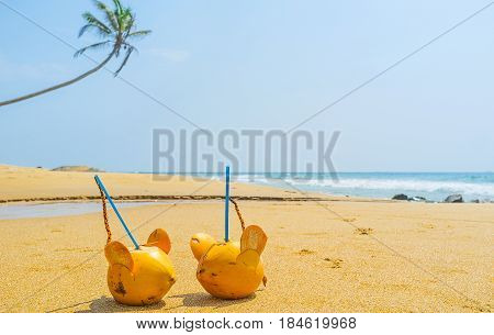 Romantic Vacation In Sri Lanka