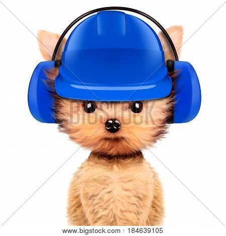 Funny dog in earphone and hard hat isolated on white background. Fixing computer and repair center concept with cute dog. Concepts for web banners, web sites. 3D illustration with clipping path