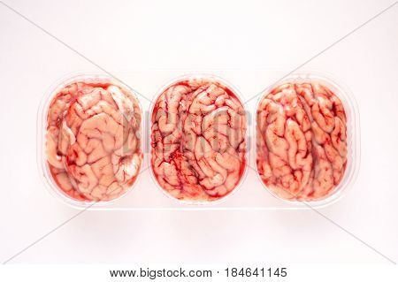 High angle view of three brains in a plastic punnet on a white background